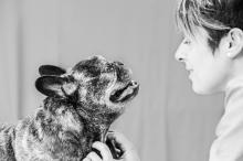 RETRATO MASCOTAS & FAMÍLIAS. #RetratoAnimal #RetratoMascotas #AnimalLover #FotografaMascotas.